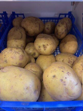aardappel 1 kg