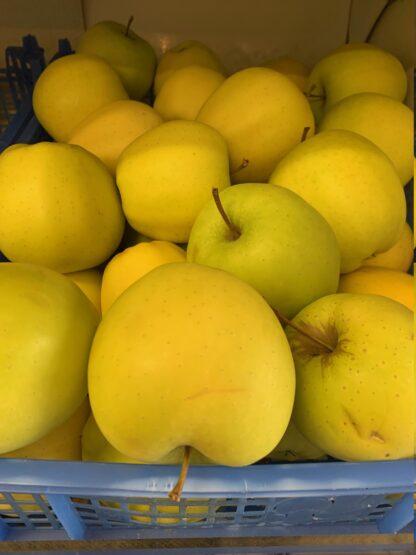 Appel Golden 1 kg